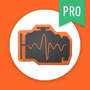 inCarDoc Pro APK download