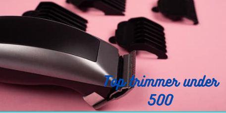top-10-trimmer-for-men-under-500