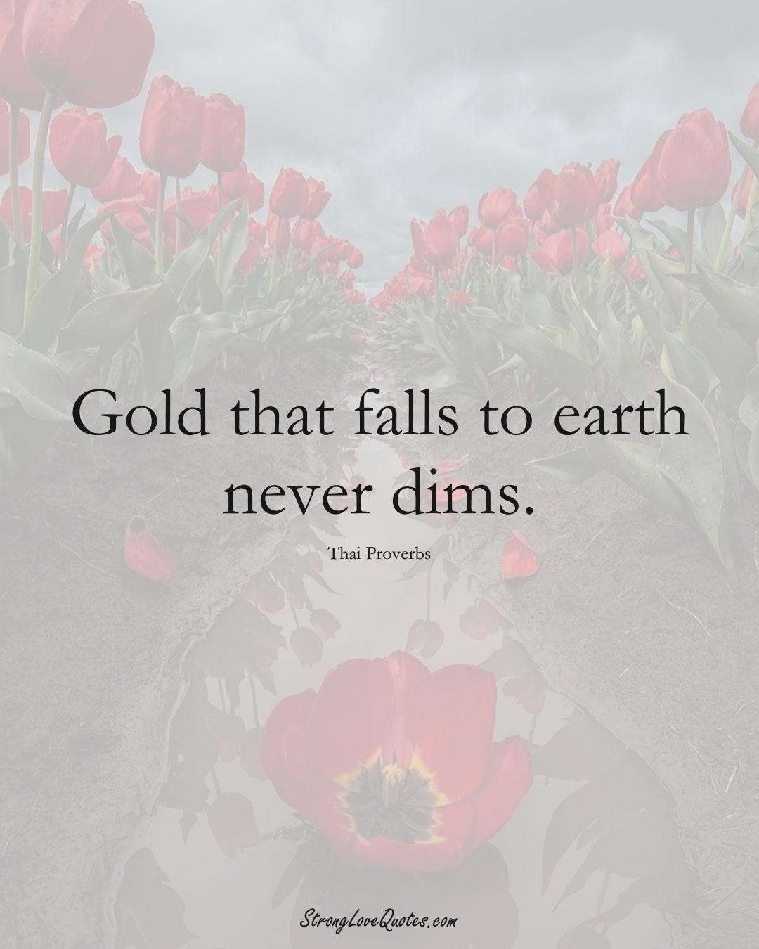Gold that falls to earth never dims. (Thai Sayings);  #AsianSayings