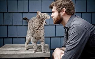 8 razones por las que deberías considerar salir con un chico que tiene un gato