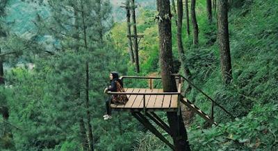 wisata hits omah kayu malang