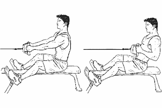 2. Seated Cable Row