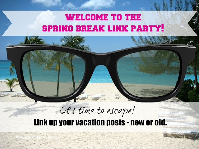 Spring Break Link Party - great vacation ideas!
