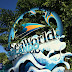 SeaWorld Update: New Sesame Street Land Sign, Infinity Falls Issues, and More (PART 1)
