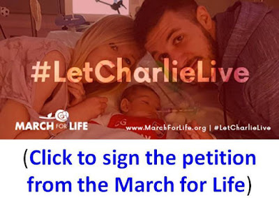 https://www.votervoice.net/UserSite/MarchforLife/Petitions/1135/Respond