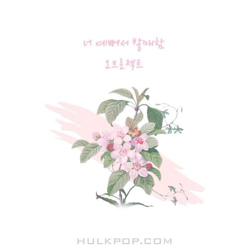 OBROJECT – 너 예뻐서 발매함 – Single