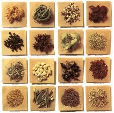 11 hierbas para adelgazar hierbas y especias que