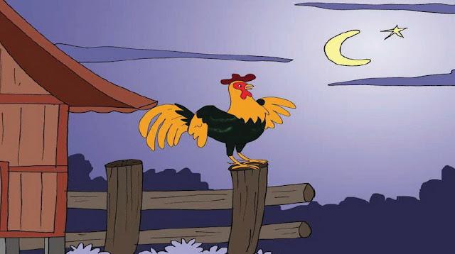 Ayam Jago Baru untuk Anak SD, TK dan PAUD