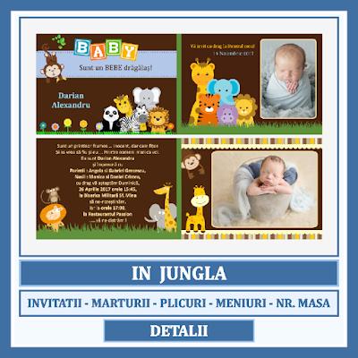 http://www.bebestudio11.com/2017/06/modele-asortate-botez-in-jungla.html