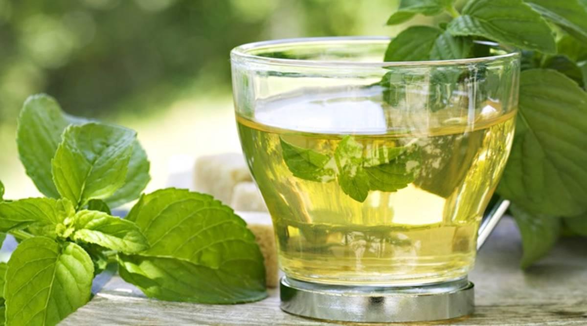 Green Tea Benefits for Weight Loss