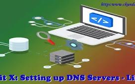 Unit X: Setting up DNS Servers - Linux