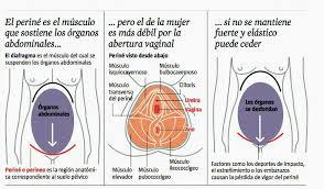 debilitación abertura vaginal embarazo
