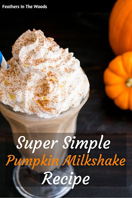 pumpkin milkshake with whipped cream and spices on top next to mini pumpkins