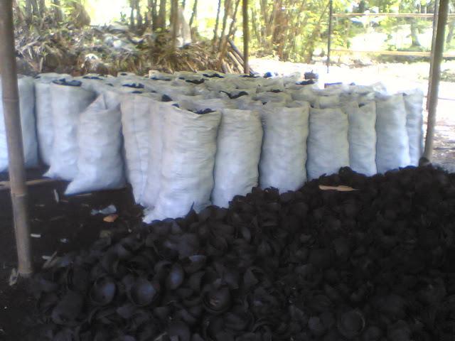 Bahan Karbon Aktif