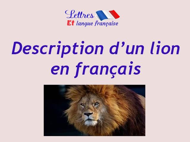 Production écrite sur le lion 5ème année primaire 5ap