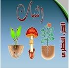 كتاب رائع عن النبات PDF
