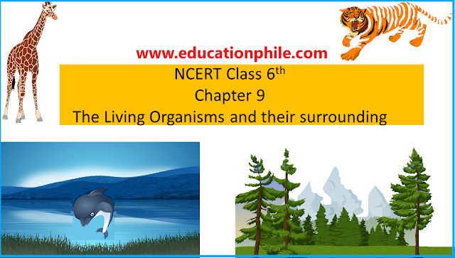 The living organisms and their surroundings, NCERT class 6, chapter 9, NCERT class 6th Science Solutions,NCERT Solutions,NCERT Solutions Class 6,NCERT Solutions, The living organisms and their surroundings
