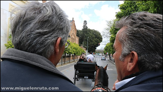 Calesa-Jerez-Coche-Caballos_2
