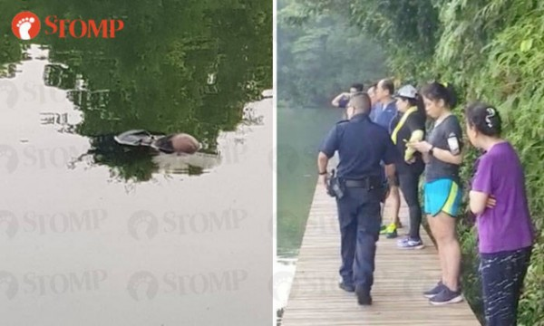 On June 17, 2018, at 7.15am, the police were alerted to a case of a body of a man floating at Lower Peirce Reservoir.