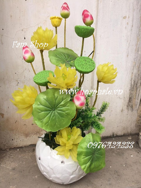 Hoa da pha le o Vinh Phuc