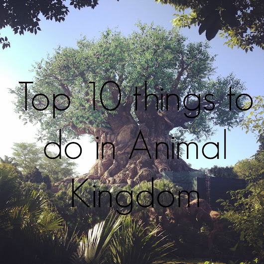 Disney 30 Week Countdown - Top 10 things to do at Animal Kingdom