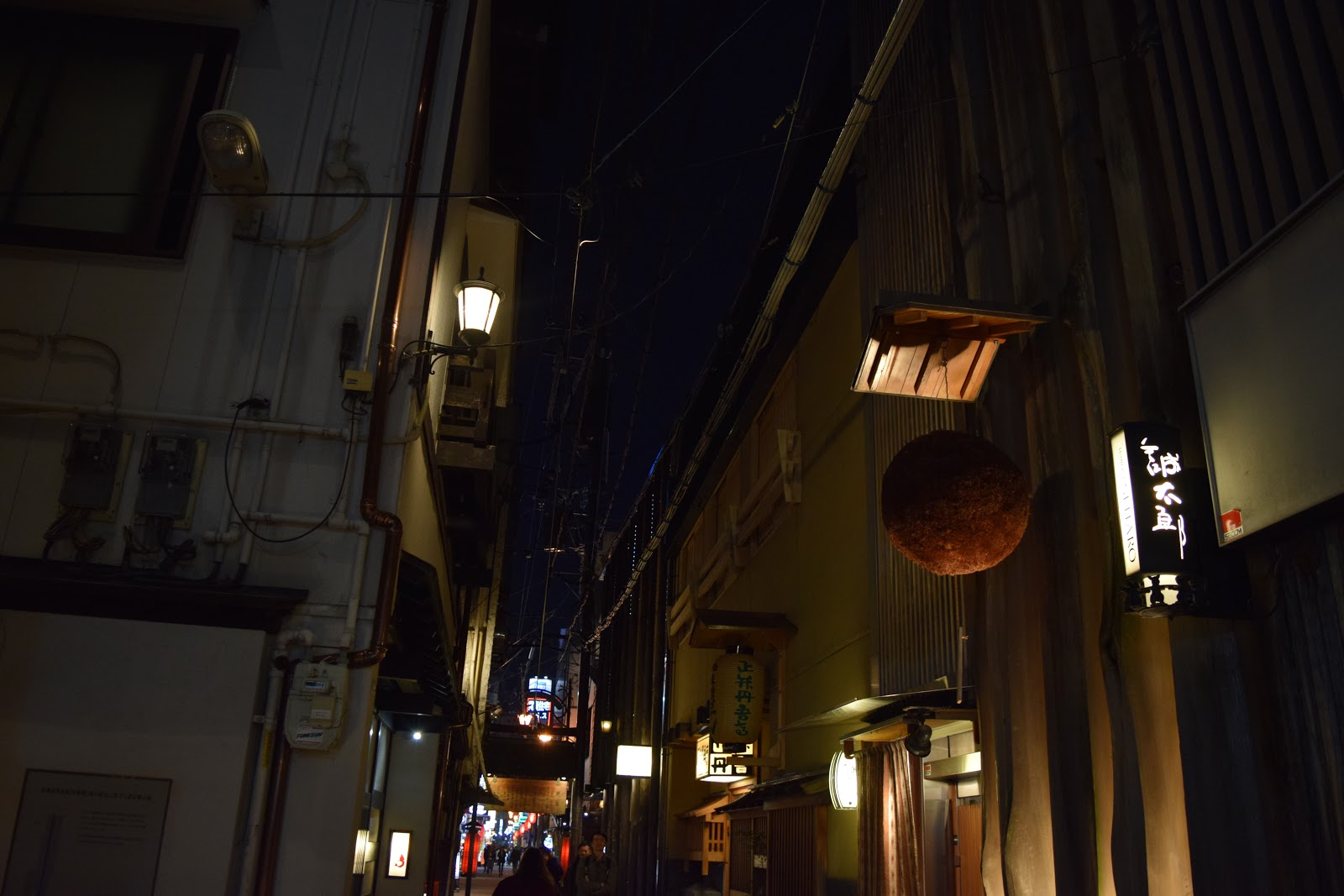 Osaka street at night with Sugidama cedar ball outside a sake shop