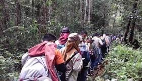 Hutan di Indonesia memiliki berbagai tipe dan formasi tertentu. Hutan hujan tropis merupakan hutan daun lebar yang selalu hijau dengan tingkat kerapatan pohon yang tinggi (Schimper AWF, 1989). formasi hutan adalah, tipe hutan adalah. tipe hutan pdf, formasi hutan pdf, bentuk formasi hutan, bentuk tipe hutan, hutan hujan tropis, hutan payau, hutan mangrove, hutan musim dan tipe tipenya