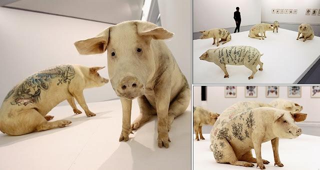 wim delvoye, porcos tatuados, tatuagem em porcos. artistas bizarros, obras de arte macabras, obras de arte bizarras, arte macabra, arte contemporânea, arte escatológica, coisas assustadoras