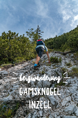 Gamsknogel und Kohleralm  Bergtour Inzell  Wanderung Chiemgauer Alpen 20