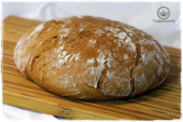 Gartenblog Topfgartenwelt Brot aus dem Dampfbackofen: Brot selber backen Buchtipp