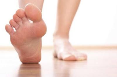Pantangan makanan penderita asam urat kolesterol
