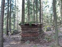 Luovaa leikkiä - perinteinen maja Gammelbackan metsässä