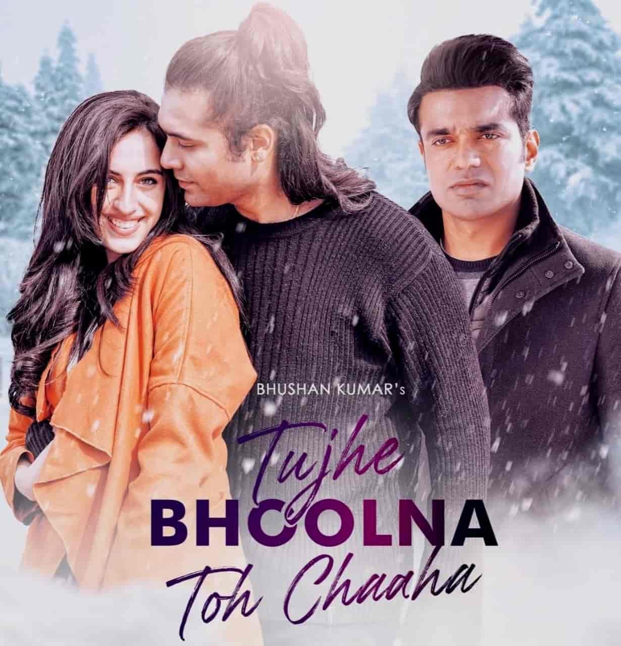 Tujhe Bhoolna Toh Chaaha Hindi Song Lyrics Jubin Nautiyal