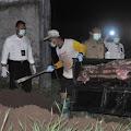 Diduga Hendak Jual Daging Sapi Gelonggongan, Tiga Warga Ampel di Tangkap Polisi