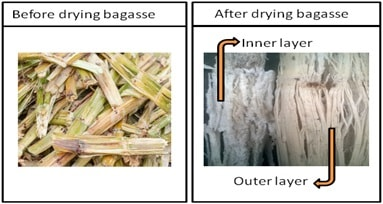 Drying of Sugarcane bagasse