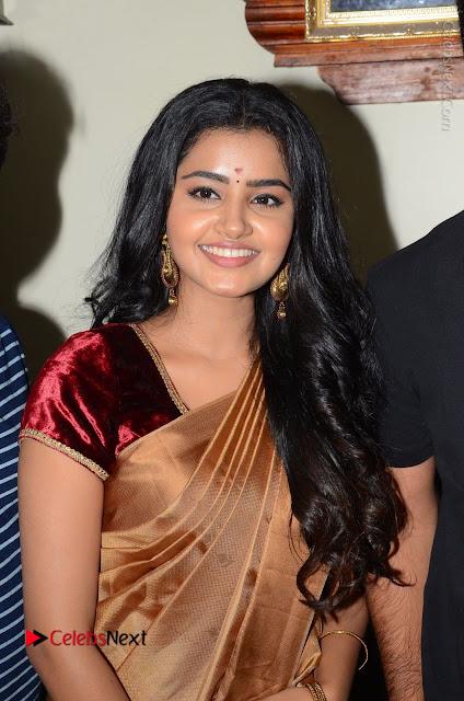 Actress Anupama Parameswaran Stills in Silk Saree with Shatamanam Bhavati Team at Sandhya Theater  0002.JPG