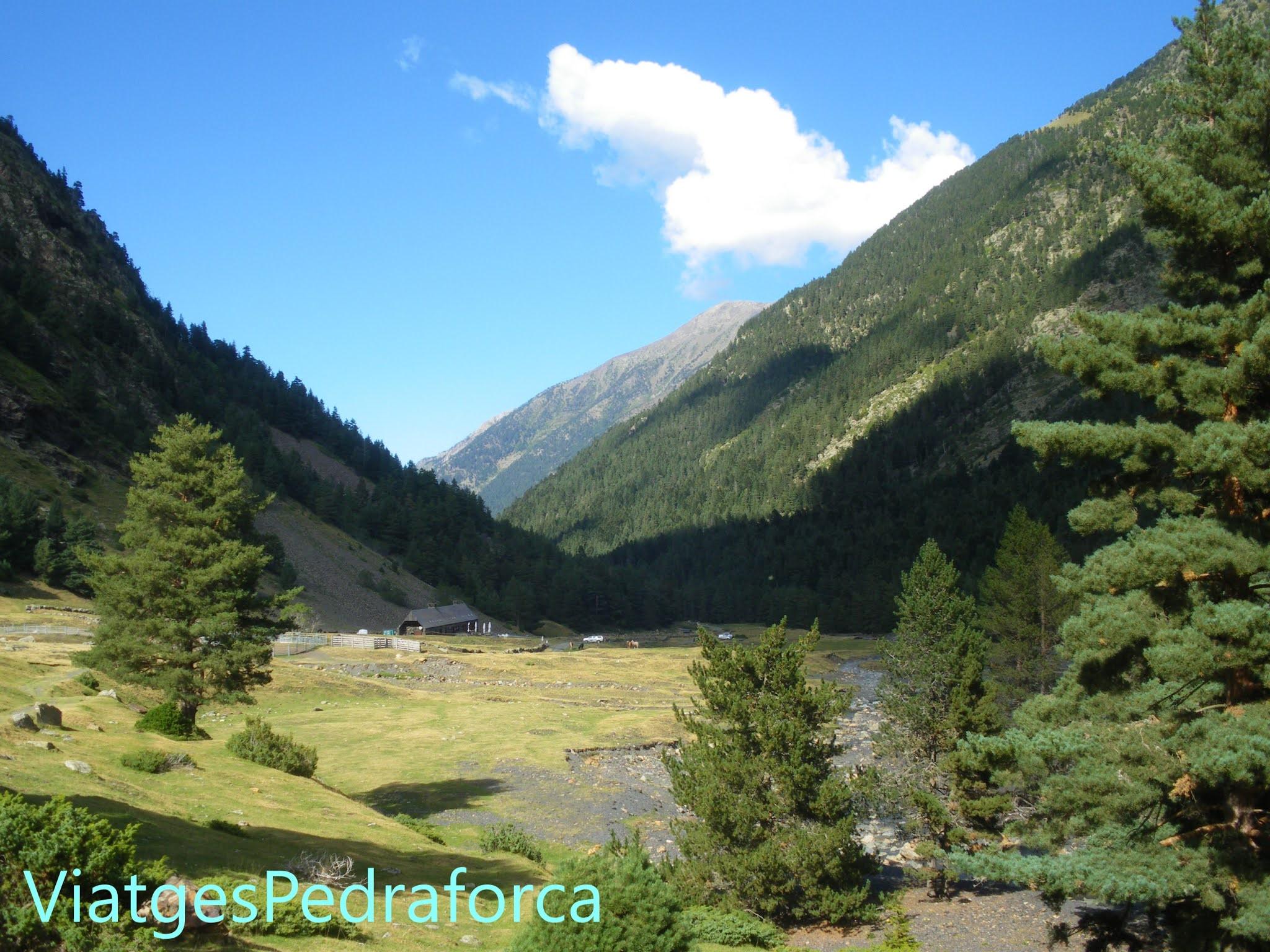 Pirineus, França, Vallée d'Aure, natura, senderisme
