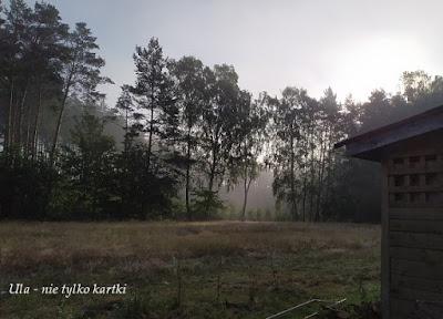 Poranek na wsi, czyli korzyści z wczesnego wstawania
