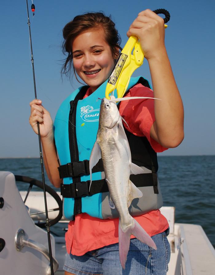 Catching Gafftopsail Catfish