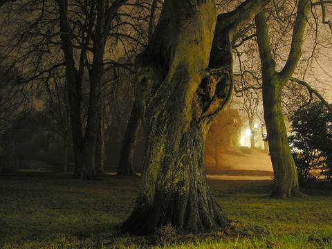 http://thespellboundseries.blogspot.com/
