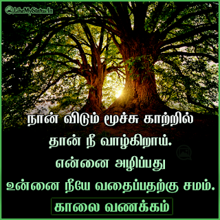 Nature quote with good morning