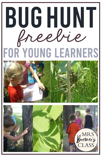 Outdoor Bug Scavenger Hunt freebie activity for Kindergarten and First Grade