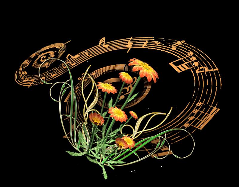 Ищем музыку в интернете