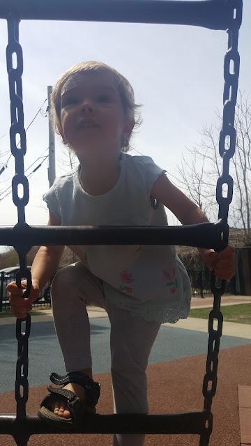 park-ladder