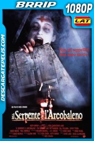 La Serpiente y El Arco iris (1988) 1080P BRRIP Latino – Ingles