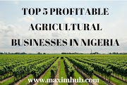 TOP 5 PROFITABLE AGRICULTURAL BUSINESSES IN NIGERIA.