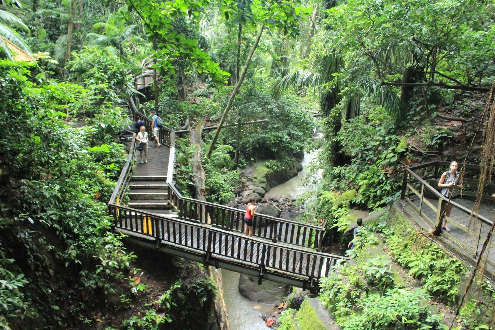 Ubud Monkey Forest Wisata Alam Yang Wajib Dikunjungi