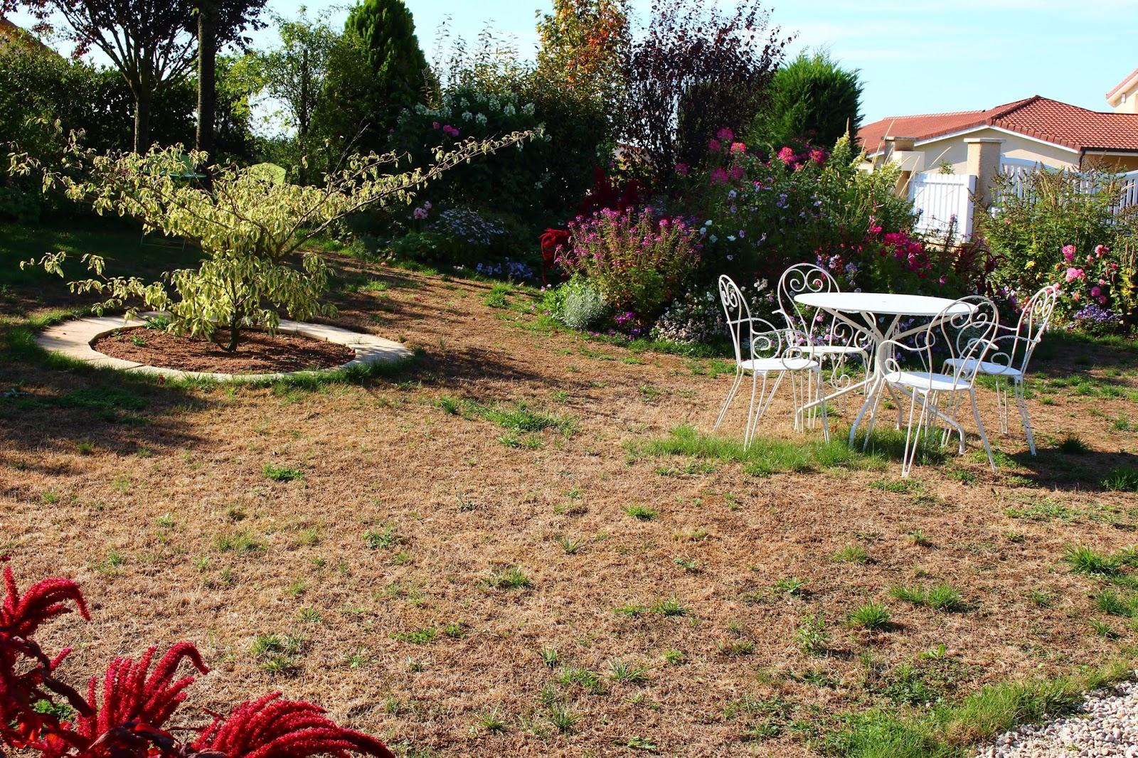 Roses Du Jardin Cheneland 09 01 2015 10 01 2015