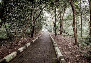 Hutang Kota Srengseng
