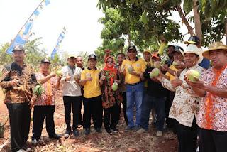Diresmikan Wabup Taufik Hidayat, Indramayu Miliki Agro Wisata